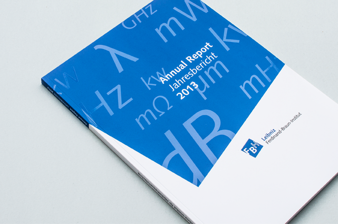 FBH Annual Report 2013 2